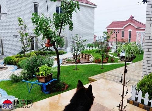 晒一个网友的农家小院装修设计效果图 真的非常田园美