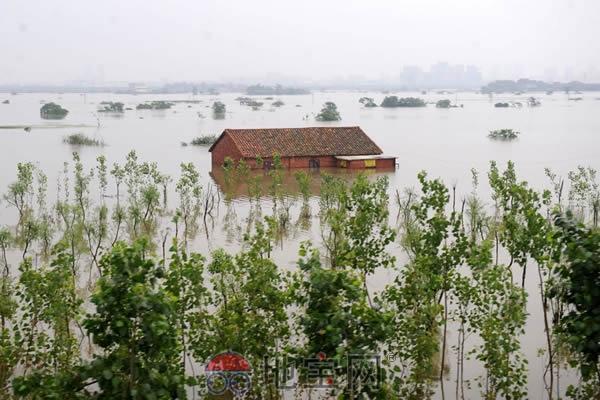 突发洪水怎么办
