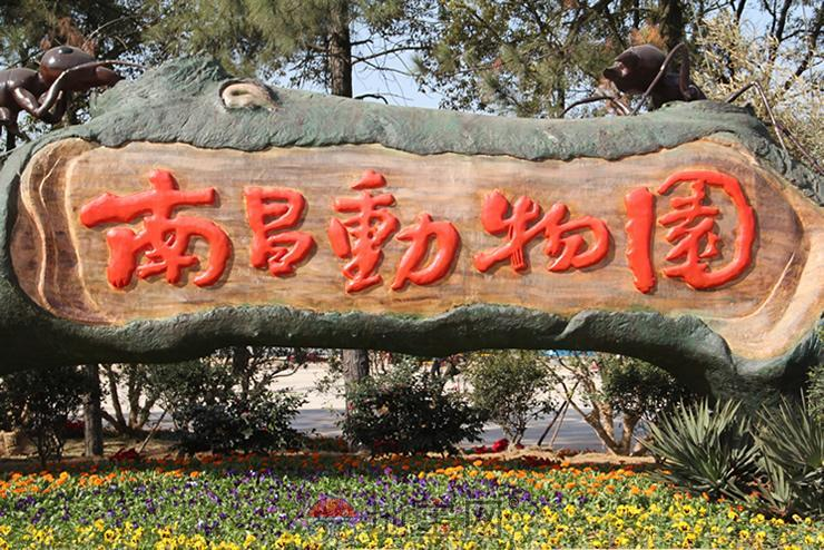 简笔画 广州动物园 动物园狼