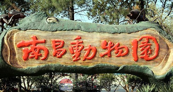 地宝网将组织大家去南昌新动物园玩